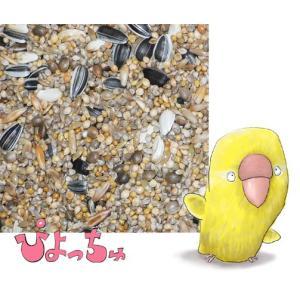 ラブバード・マメルリハ・中型インコ春用ブレンド 1kg piyocyu-ash