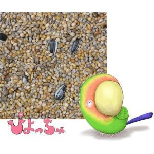 ラブバード・マメルリハ・中型インコ夏用ブレンド 2.5kgx4 piyocyu-ash