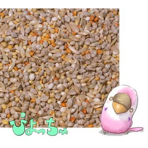 セキセイインコ春用ブレンド 1kg×10|piyocyu-ash