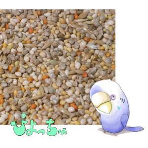 セキセイインコ夏用ブレンド 5kgx1|piyocyu-ash