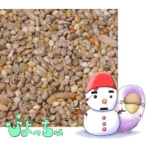 セキセイインコ冬用ブレンド 1kg×5 piyocyu-ash