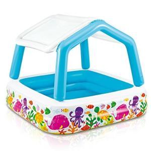 プールIntex Sun Shade Inflatable Pool, 62