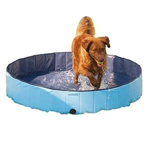 プールCool Pup Splash About Dog Pool in Blue, Portable|planetdream