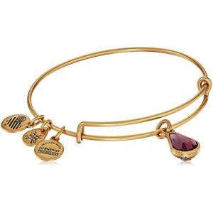 アレックスアンドアニAlex and Ani February Birth Month Charm with Swarovski Crystal Rafaelian Gold Bangle Bracelet|planetdream