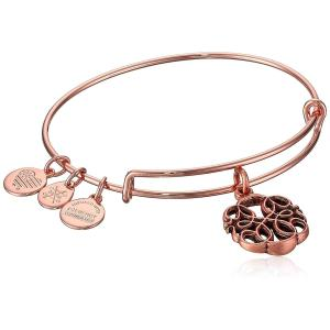 アレックスアンドアニAlex and Ani Women's Path of Life Rose Gold Charm Bangle Bracelet, Expandable|planetdream