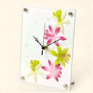 インテリア置時計/卓上時計/グリーンクロック アフリカンリリーピンク|plasart