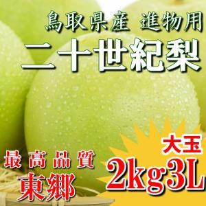 二十世紀梨 20世紀梨 鳥取県 東郷 赤秀 2kg 3L(6玉) 大玉 贈答用 進物用 果物 お取り寄せ|plat-sake
