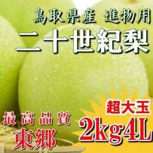 二十世紀梨 20世紀梨 鳥取県 東郷 赤秀 2kg 4L(5玉) 超大玉 贈答用 進物用 果物 お取り寄せ|plat-sake