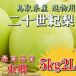 二十世紀梨 20世紀梨 鳥取県 東郷 赤秀 5kg 2L(16玉) 贈答用 進物用 果物 お取り寄せ|plat-sake