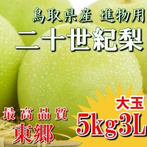 二十世紀梨 20世紀梨 鳥取県 東郷 赤秀 5kg 3L(12~14玉) 大玉 贈答用 進物用 果物 お取り寄せ|plat-sake