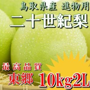 二十世紀梨 20世紀梨 鳥取県 東郷 赤秀 10kg 2L(32玉) 贈答用 進物用 果物 お取り寄せ|plat-sake
