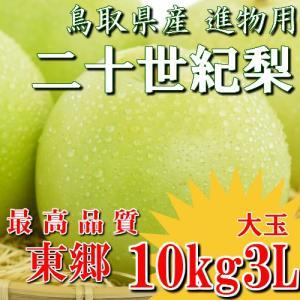 二十世紀梨 20世紀梨 鳥取県 東郷 赤秀 10kg 3L(24~28玉) 大玉 贈答用 進物用 果物 お取り寄せ|plat-sake