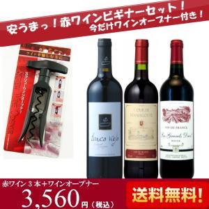 お歳暮 ワインセット 赤 安旨デイリーワイン3本セット ビギナー 初級編 今だけワインオープナー付き ギフト プレゼント ミディアムボディ フルボディ|plat-sake