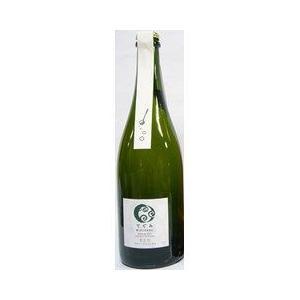 丹波ワイン スパークリングワイン てぐみ デラウェア 酸化防止剤無添加  白  750ml|plat-sake