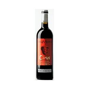 赤ワイン アラン・ブリュモン シリュス マディラン 2010|plat-sake