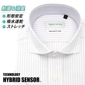 ワイシャツ Yシャツ メンズ半袖 スナップダウン 形態安定 HybridSensor P16HBZD03|plateau-web