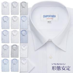 ワイシャツ メンズ 半袖 形態安定 形状記憶 標準型 CARPENTARIA P16S1PC01|plateau-web
