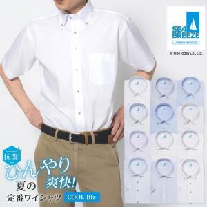 ワイシャツ 半袖 形態安定 メンズ 標準  Yシャツ ビジネス クールビズ coolbiz 半袖ワイシャツ クールビズ半袖 Yシャツ半袖 シーブリーズ  [P16S1X005]|plateau-web