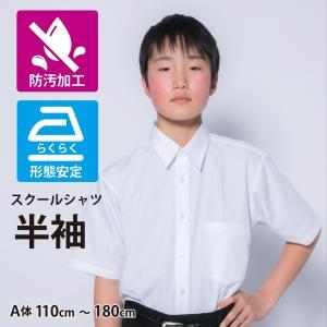 レギュラーカラー スクールシャツ 防汚加工形態安定 PLATEAU P63PLR201|plateau-web
