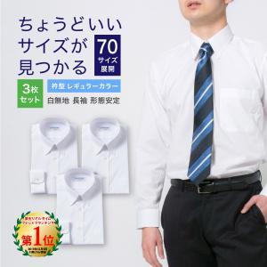 ワイシャツ メンズ 長袖 形態安定 形状記憶 標準型 CARPENTARIA レギュラーカラー Y12S3R101|plateau-web