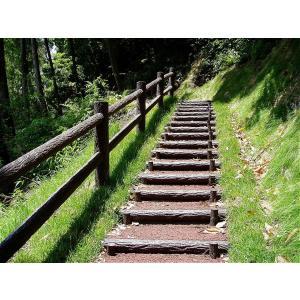 ◆公共事業で採用実績のある二連木階段です。 ◆コンクリートと比べ重量は軽く、木材と比べて腐ることもな...