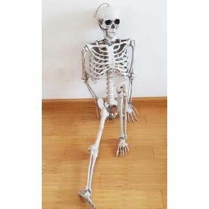 ハロウィン 骸骨 170cm プラスティック 装飾 飾り 小道具 新品【領収発行可】 playone