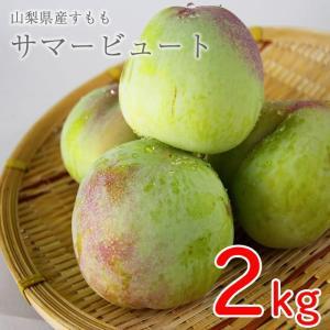 山梨県産 すもも (プラム) サマービュート 2kg箱 16〜20玉前後 plumfarm