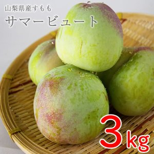 山梨県産 すもも (プラム) サマービュート 3kg箱 24〜28玉前後 plumfarm