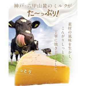 六甲山麓牛乳仕込み 遊酪舎しっとりしたちーずけーき チーズケーキ 5号 約300g ポイント消化 ポスト投函便 送料無料 |plumterracenet|02