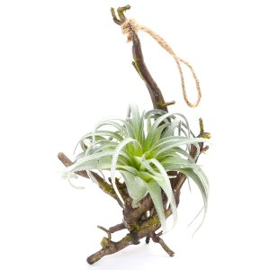 フェイクグリーン 造花 ハンギング 人工植物 観葉植物 植物 リビング おしゃれ 壁掛け