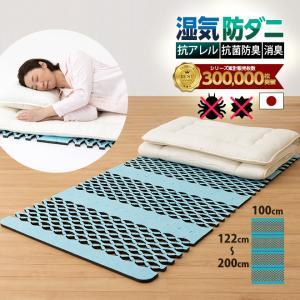 すのこ型除湿マットレス 防ダニ ダニシート 日本製 布団 抗菌防臭 テイジン ベルオアシス エアジョブ シングル 除湿シート 吸湿シート すのこベッド ダニ対策|plus1-store