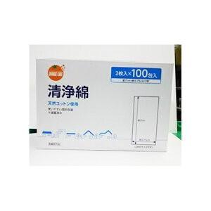 オレンジケア 清浄綿 (100包)|plus1spot