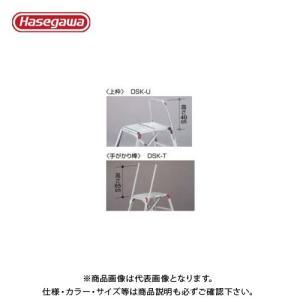 (個別送料1000円)直送品 ハセガワ 長谷川工業 DSK用オプション 上枠 DSK-U 10088|plus1tools