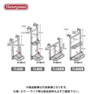 (個別送料2000円)(直送品)ハセガワ 長谷川工業 トラック荷台昇降ステップ トラックステッパー (アオリ引っ掛けタイプ) TS-500D 31653|plus1tools