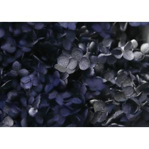 【プリザーブドフラワー・プリザーブド 花材】 1箱(約2.5輪入)  *自然の生花や植物を原料として...