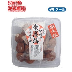 紀州南高梅超大粒はちみつ梅 塩分7% (480g)保存食|plusin
