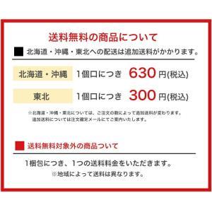 サントリー C.C.レモン ペットボトル(500mL×24本入)|plusin|02
