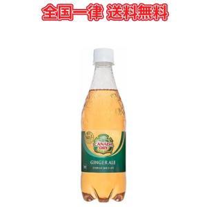 コカ・コーラ カナダドライジンジャエール500ml×24本PET|plusin
