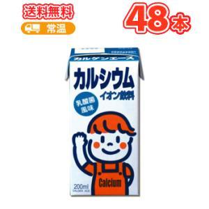 カルゲン製薬 カルゲンエース 200ml×24本 2ケース 乳酸菌風味 イオン飲料 紙パック カルシウム不足を解消|plusin