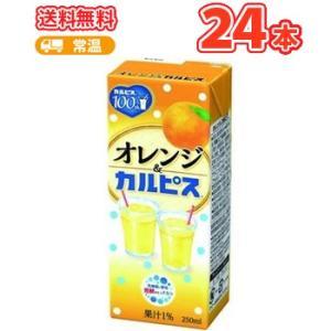 エルビー オレンジ&カルピス  【250ml】×24本 〔乳酸菌飲料 おれんじ〕|plusin