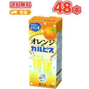 エルビー オレンジ&カルピス  【250ml】×24本/2ケース 〔乳酸菌飲料 おれんじ〕|plusin