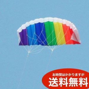 スポーツカイト パラグライダー型 デュアルライン 1.4m 凧 送料無料(海外から直送)