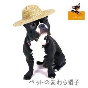 ペット用 犬猫兼用 麦わら帽子 ストローハット 帽子 あご紐付き 顎ヒモ 顎ひも 超小型犬 小型犬 中型犬 犬用 猫用 夏 おしゃれ 可愛い かわいい|plusnao