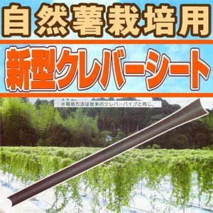 新型クレバーシート(自然薯用) 政田自然農園 タ種DPZZ|plusys