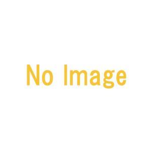 長 15頭口 全長 168cm (六角ステ入) ( G1/4 ) [1242400] 永田製作所 ナガタ 防J【代引不可】|plusys