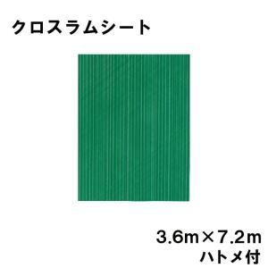 クロスラムシート 3.6 m × 7.2 m ハトメ付 【養生シート】 カ施【代引不可】|plusys