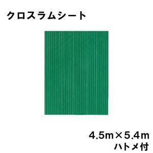 クロスラムシート 4.5 m × 5.4 m ハトメ付 【養生シート】 カ施【代引不可】|plusys