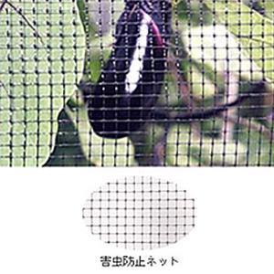 【4本】 害虫防止ネット 黒 OV3018 2m×50m 目合6×6mm 33g/m2 コンウェッドネット タ種【代引不可】|plusys