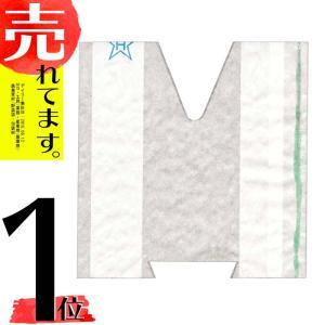 【100枚】 桃用 果実袋 オゾンS 120×140 一重袋 点付け 早生用 桃 モモ もも 掛袋 星野 DPZZ|plusys