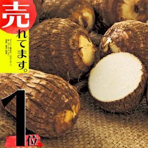 【1kg】 種芋 里芋 土垂 販売期間4-6月まで 米S【代引不可】